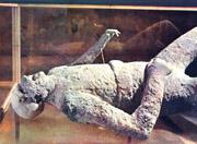 Plaster cast in Pompeii