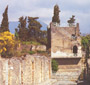GUIDED TOUR TO POMPEII,  POSITANO, SORRENTO AND CAPRI FOR DISABLED PEOPLE (POMPEII  TOURS)
