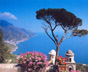AMALFI COAST TOUR FOR DISABLED (AMALFI COAST)